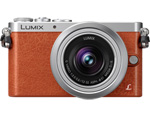 Panasonic DMC-GM1KD Compact Camera System
